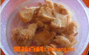 猴头菇的泡发方法技巧